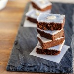 Coconut Almond Mocha Fudge- paleo and low carb version